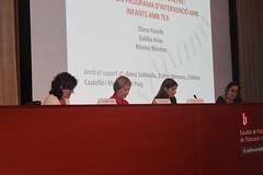 Jornada Neurones Mirall 2013 (5)