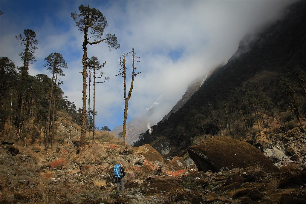 The mezmerizing beautiful approach through the Inkhu Khola. Makalu-Barun Conservation Area and National Park.