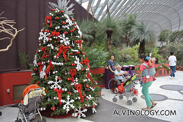 We were greeted by this Christmas tree upon entrance to the Flower Dome