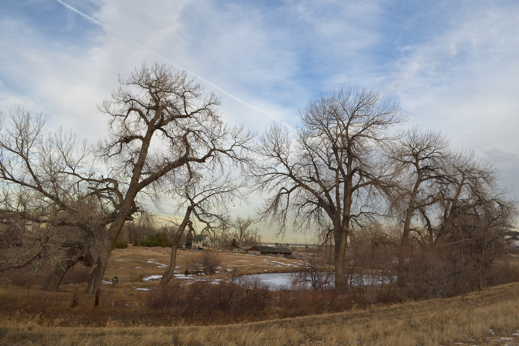 20121225-pond in rural westminster colorado.jpg