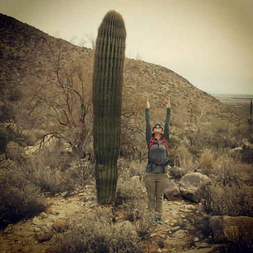 More #yoga in the desert. That's one tall cactus. #UrdhvaHastasana
