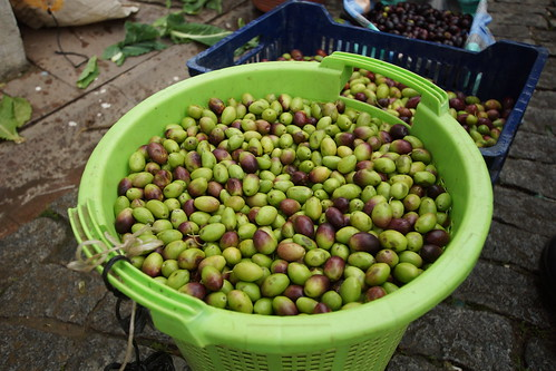 Fresh olives from Tire by CharlesFred