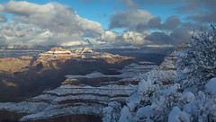 Dec. 2012: Grand Canyon National Park: Snowscape from Yavapai Point