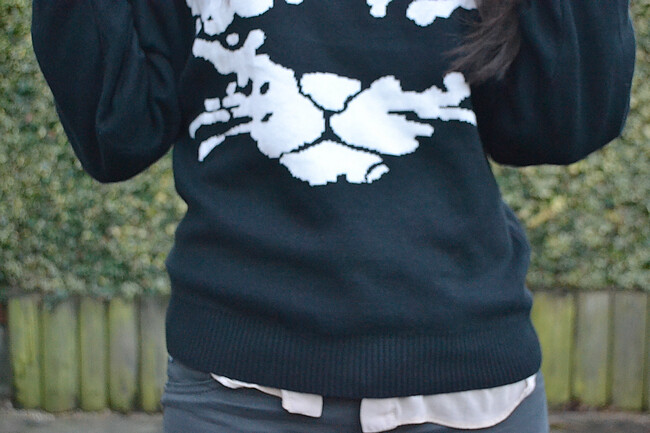 daisybutter - UK Style and Fashion Blog: what i wore, ootd, AW12, animal motif trend, adriano goldschmied