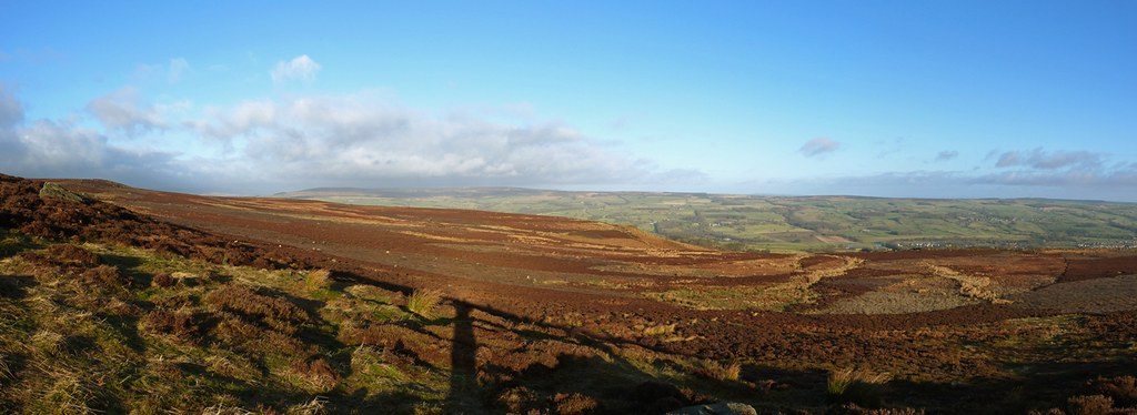 29123 - View from Burley Moor