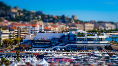 Cannes Film Festival, France