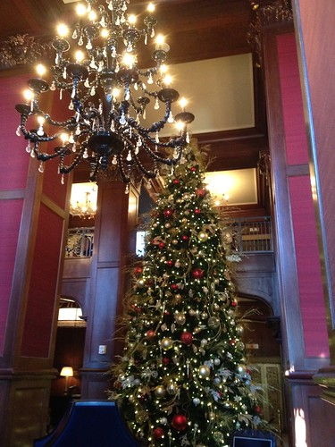 Gorgeous tree in the lobby of the Skirvin