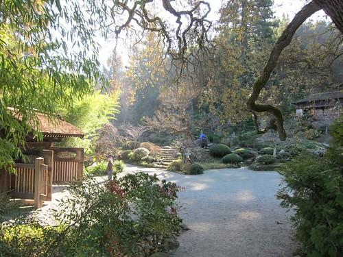 Hakone Japanese Gardens, Saratoga, CA IMG_2306