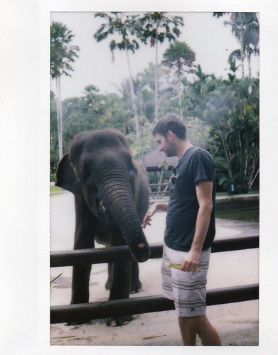 Honeymoon - Instax Scans