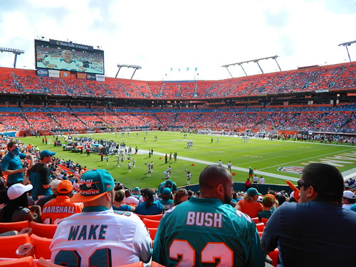 Dolphins/ Jaguars Game