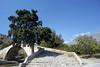 Kreta 2007-2 429