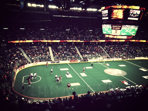 Things To Do With Kids In Calgary: Lacrosse and the Calgary Roughnecks