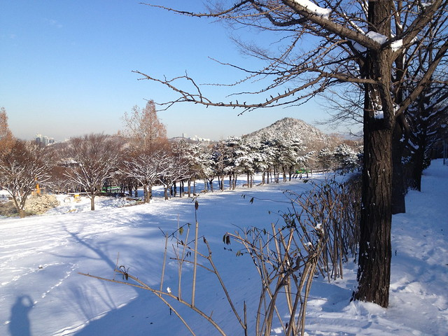 Winter SNU