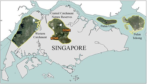 Map of Singapore showing locations of major forest fragments (Map prep by Marcus Chua)