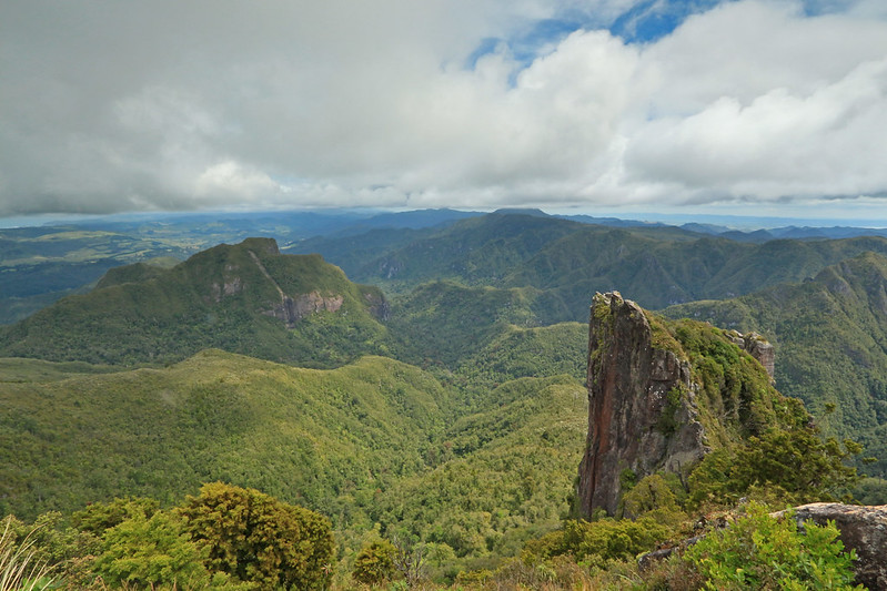 Coromandel Range, from The Pinnacles, view looking southwest, Coromandel Forest Park, Thames-Coromandel District, Waikato, New Zealand 1