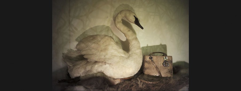 Lady Dior As Seen By Nan Goldin