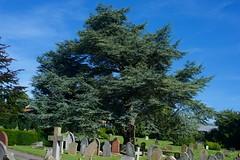 Chesham Cemetery