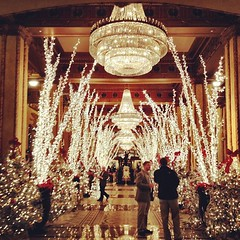 Holiday decorations at the Roosevelt Hotel #onlyattulane #onlyinneworleans