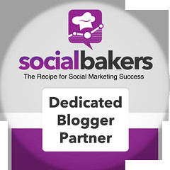 Social Bakers Blogger Partner