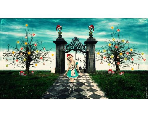 * Xmas In Wonderland *