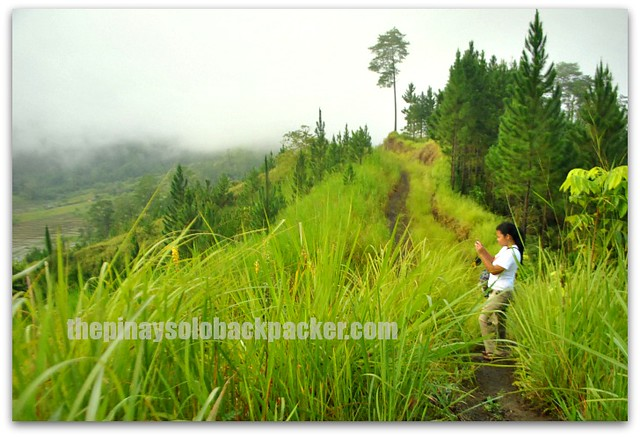 Malaybalay Bukidnon Tourist Spots and Tourist Attractions