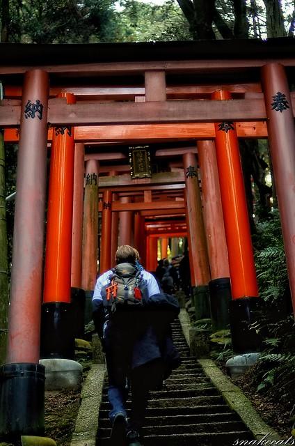 「登り」 伏見稲荷 - 京都