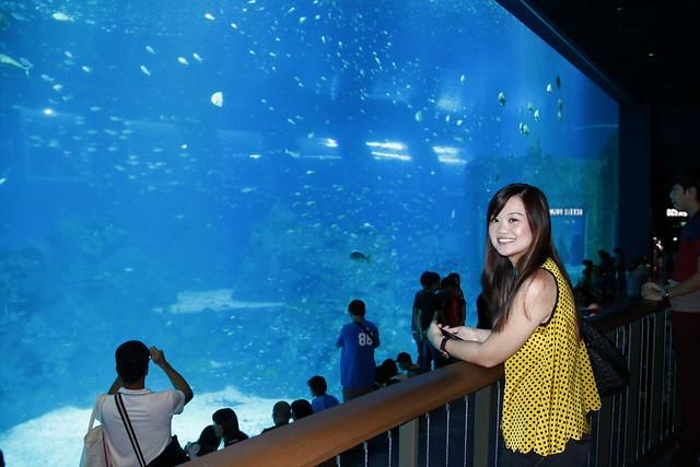 RWS S.E.A Aquarium 615