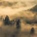 Fog at the Saarschleife by m@yphotos