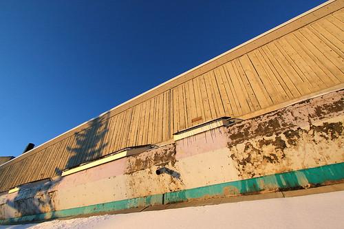 Elementary Decay i7617