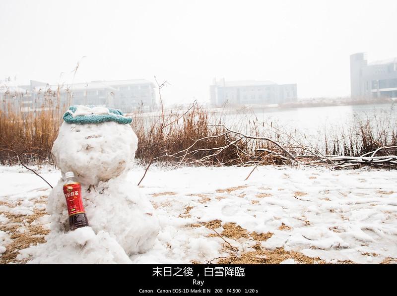 末日之後,白雪降臨