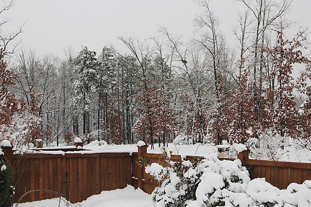 snow_forblog