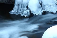 Oak Creek Walk in the Snow, December 30, 2012