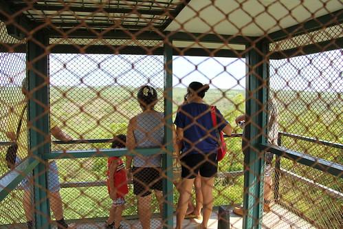 Bekol Area , Taman Nasional Baluran