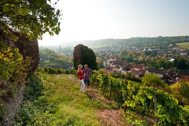Pfalz Die Besten Hotels Wellness