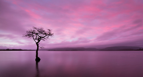 Loch Lomond Sunrise by Billy Currie
