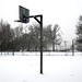 The basketball pitch