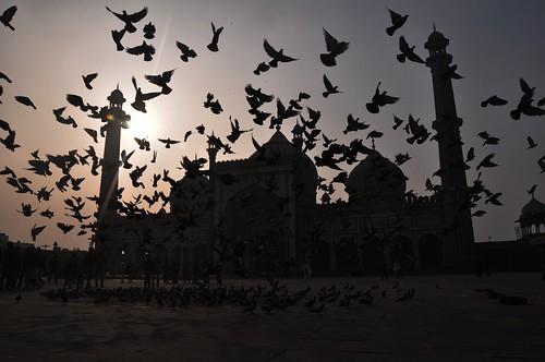 Jama Masjid, Delhi. Photo: Sourav Das