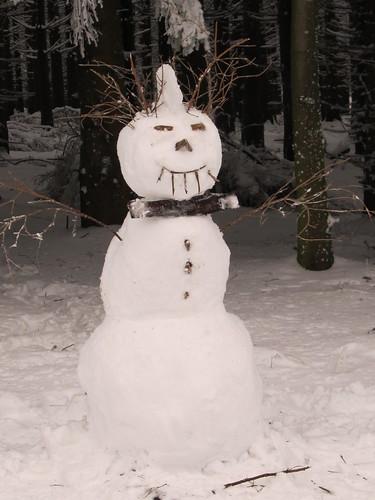 une journee a la neige aux donon 026