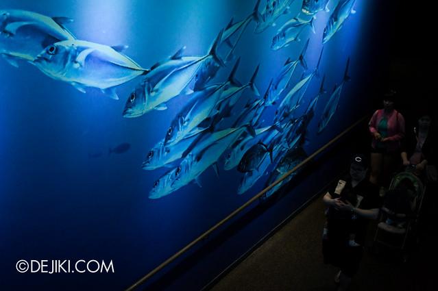 S.E.A. Aquarium - Thematic Walls 1