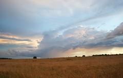 Storm a-comin'