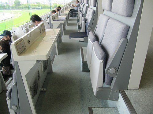 京都競馬場B指定席座席