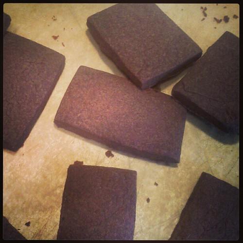 chocolate shortbread with espresso powder & a touch of cinnamon