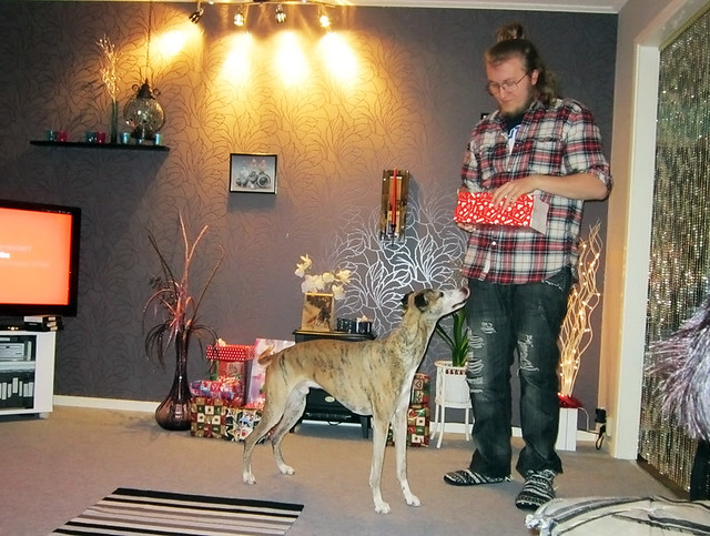 Even the dog gets a present