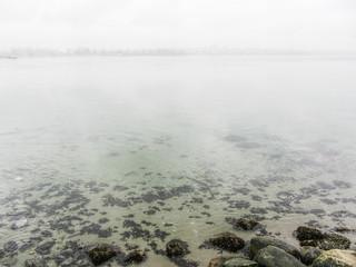Fog & Rocks