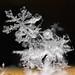 Flakes of snow 1 by Mark Watson (kalimistuk)