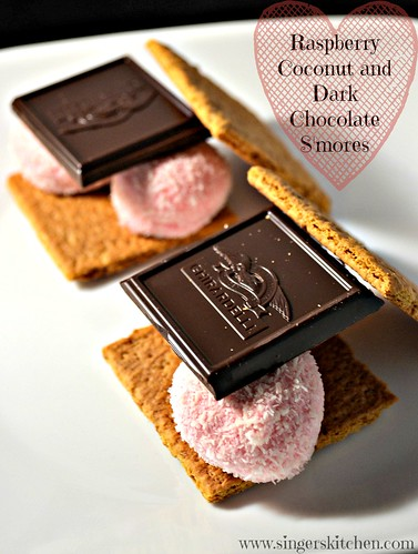 Raspberry Coconut and Dark Chocolate S'mores