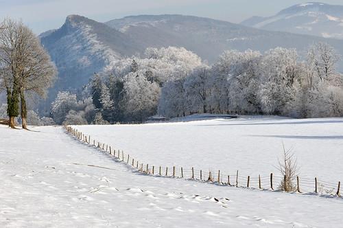 winter snow nature forest landscape switzerland frost country jura delémont flickrlovers greatshotss