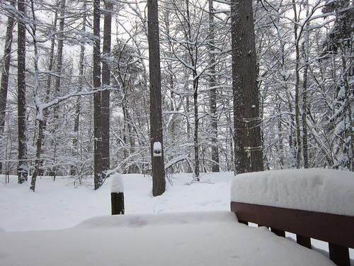 ベランダの積雪/昨夜の大雪 2013年2月13日8:25 by Poran111