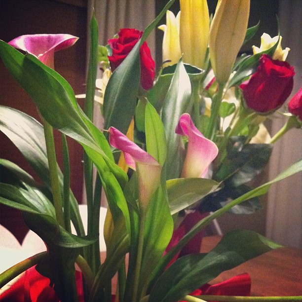 Pretties from my loves
