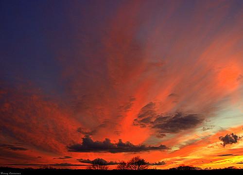 uk inglaterra blue trees sunset england sky orange azul clouds downs bristol atardecer arboles unitedkingdom rosa cielo nubes naranja clifton crepúsculo nwn thedowns pinka bestcapturesaoi
